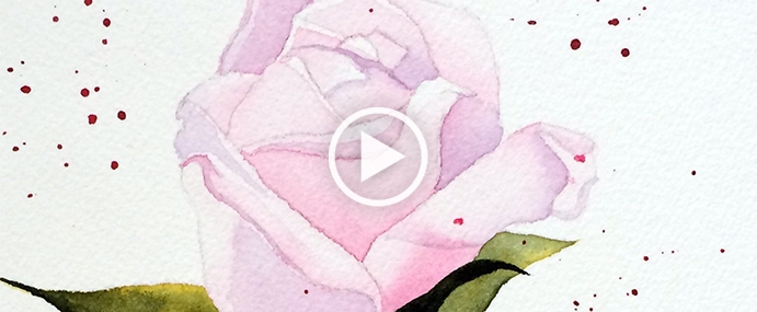 peindre une rose l 39 aquarelle wip 12 pauline art gallery. Black Bedroom Furniture Sets. Home Design Ideas